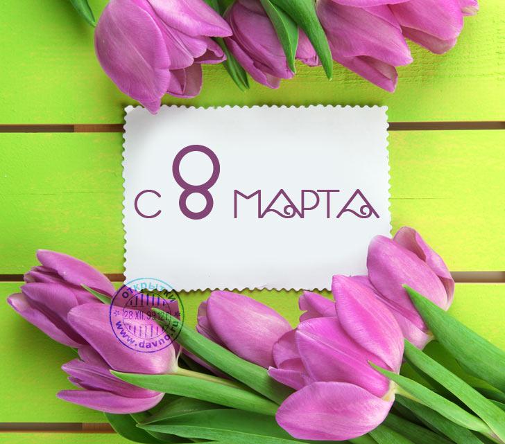 vosmoe-marta-419